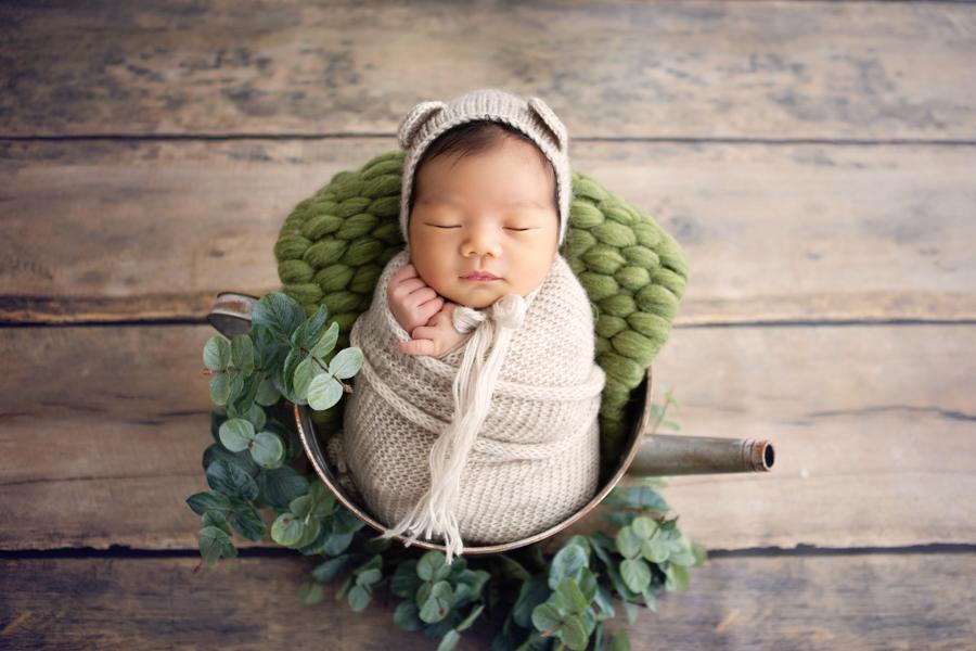 sydney newborn photography infant photography-10