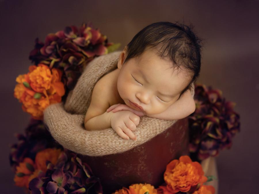sydney newborn photography infant photography-51